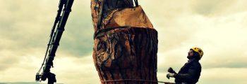 abbattimento controllato alberi san ginesio